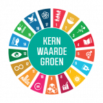 Sustainable Development Goals in vastgoed, Duurzame Transformatie in vijf thema's